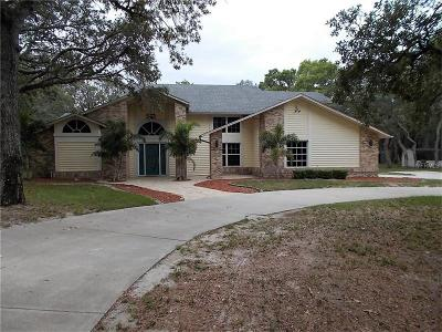 Spring Hill Single Family Home For Sale: 7382 Lagoon Road