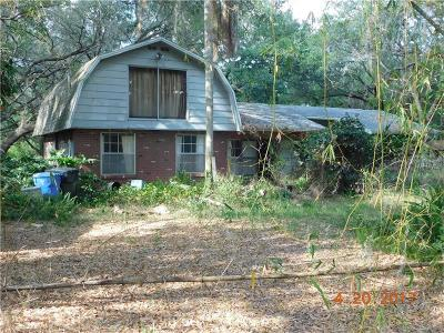 Single Family Home For Sale: 6608 Thonotosassa Road