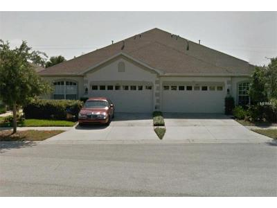 Apollo Beach Villa For Sale: 6911 Surrey Hill Place