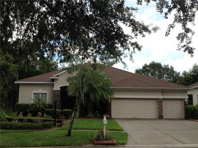 Valrico Single Family Home For Sale: 1623 Brilliant Cut Way