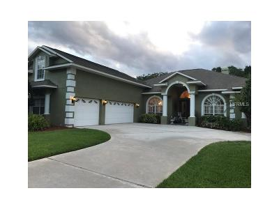Valrico Single Family Home For Sale: 602 Citrus Wood Lane