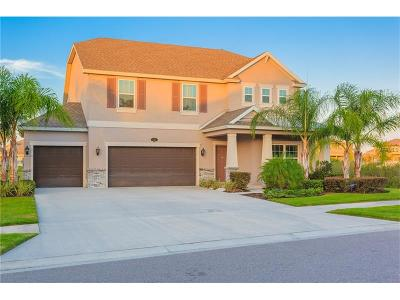 Tampa Single Family Home For Sale: 19221 Pepper Grass Drive