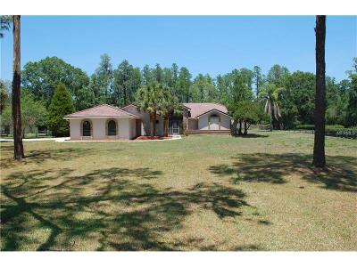 Spring Hill Single Family Home For Sale: 12450 Citation Road