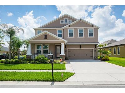 Wesley Chapel Single Family Home For Sale: 1776 Tallulah Terrace