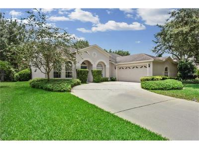 Tampa Single Family Home For Sale: 10221 Timberland Point Drive