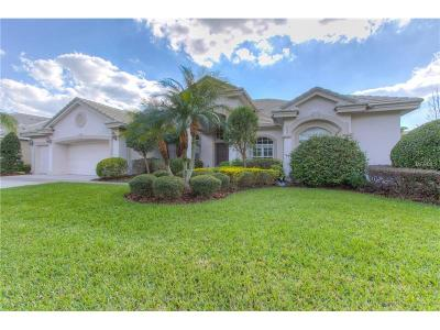 Tampa Single Family Home For Sale: 17212 Broadoak Drive