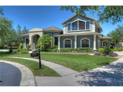 Hillsborough County Single Family Home For Sale: 5004 Davenshire Way