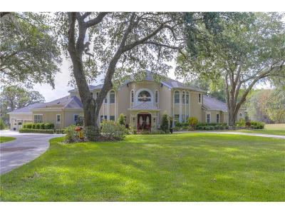 Dade City Single Family Home For Sale: 14415 Willow Run