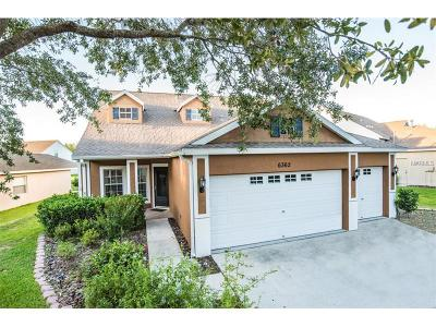 Lithia Single Family Home For Sale: 6362 Bridgecrest Drive