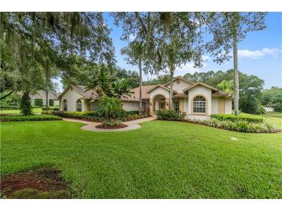 Hernando County, Hillsborough County, Pasco County, Pinellas County Single Family Home For Sale: 16214 Sentry Woods Court