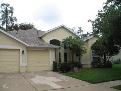 Lithia Single Family Home For Sale: 16906 Falconridge Road