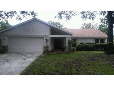Tampa Single Family Home For Sale: 13929 Cherry Dale Lane