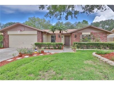 Tampa Single Family Home For Sale: 4201 Hollowtrail Drive