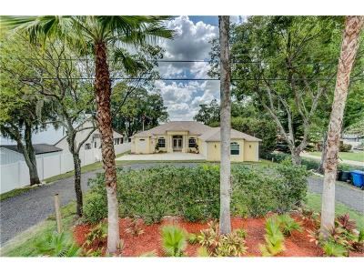 Hernando County, Hillsborough County, Pasco County, Pinellas County Single Family Home For Sale: 19710 Rhea See Drive