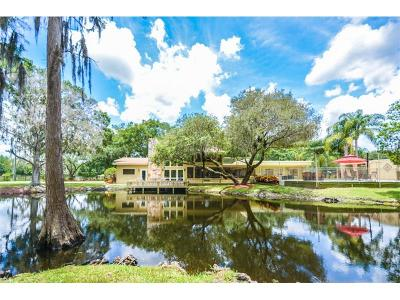 Tarpon Springs Single Family Home For Sale: 725 Ranch Road