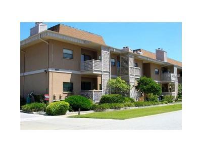 Hernando County, Hillsborough County, Pasco County, Pinellas County Rental For Rent: 4405 W Fair Oaks Avenue #13