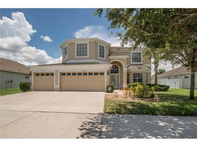 Single Family Home For Sale: 13255 Graham Yarden Drive