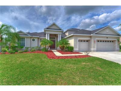 Hernando County, Hillsborough County, Pasco County, Pinellas County Single Family Home For Sale: 16608 Ashton Green Drive