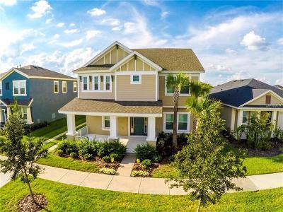 Apollo Beach Single Family Home For Sale: 7316 Milestone Drive