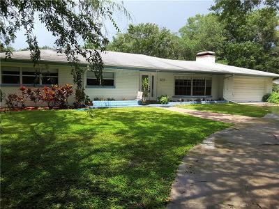 Hillsborough County Single Family Home For Sale: 2111 S Village Avenue