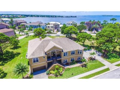 Tarpon Springs Single Family Home For Sale: 2012 Harbour Watch Circle