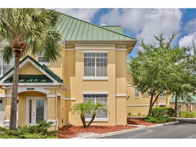 Hernando County, Hillsborough County, Pasco County, Pinellas County Rental For Rent: 6315 Sunset Bay Circle