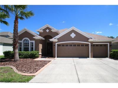 Wesley Chapel Single Family Home For Sale: 27323 Sora Boulevard