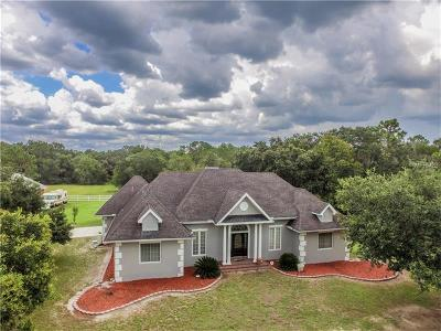 Lithia Single Family Home For Sale: 17826 Dorman Road