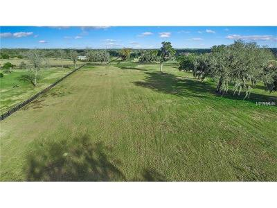Thonotosassa Residential Lots & Land For Sale: 12249 Broadwater Loop Lot 130