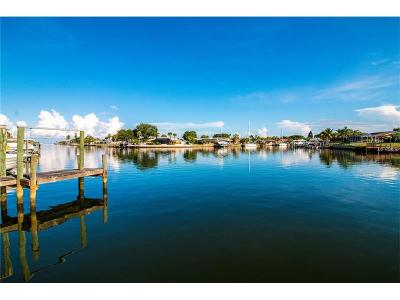 Apollo Beach Townhouse For Sale: 815 Symphony Isles Boulevard