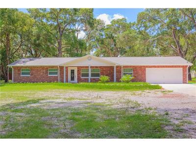 Hillsborough County Single Family Home For Sale: 11029 Clay Pit Road