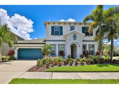 Apollo Beach Single Family Home For Sale: 6613 Park Strand Drive