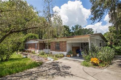 Thonotosassa Single Family Home For Sale: 12402 McIntosh Road