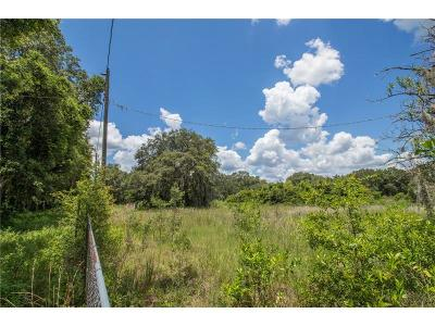 Thonotosassa Residential Lots & Land For Sale: 12400 McIntosh Road