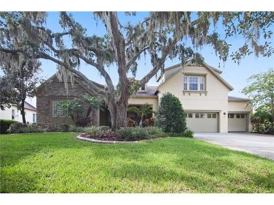 Lithia Single Family Home For Sale: 16005 Ternglade Drive