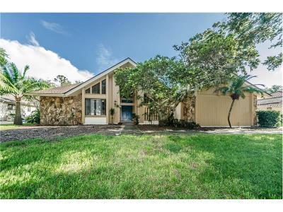 Palm Harbor Single Family Home For Sale: 1509 Willow Brook Drive