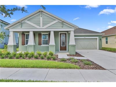 Hernando County, Hillsborough County, Pasco County, Pinellas County Single Family Home For Sale: 14746 Caravan Avenue