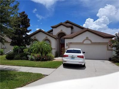 Riverview Single Family Home For Sale: 11345 Flora Springs Drive