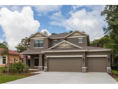 Tampa Single Family Home For Sale: 4507 Hudson Lane