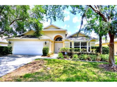 Tampa Single Family Home For Sale: 17509 Woodthrush Place