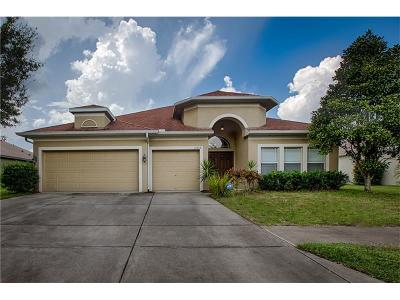 Spring Hill Single Family Home For Sale: 16808 Crested Angus Lane