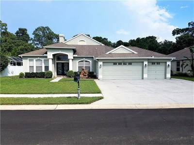 Hernando County, Hillsborough County, Pasco County, Pinellas County Single Family Home For Sale: 7928 Roundelay Drive