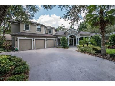 Lithia FL Single Family Home For Sale: $650,000