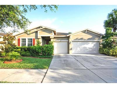 Lutz Single Family Home For Sale: 3817 Evergreen Oaks Drive