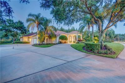 Lutz FL Single Family Home For Sale: $1,195,000
