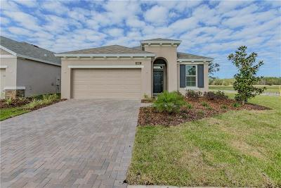 Hernando County Single Family Home For Sale: 5097 Endview Pass