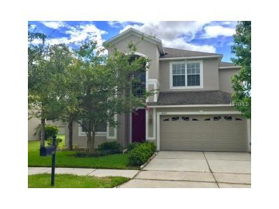 Tampa Single Family Home For Sale: 18123 Bahama Bay Drive