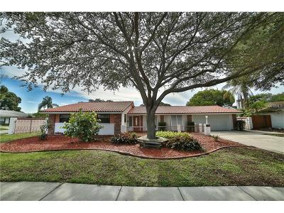 Hillsborough County Single Family Home For Sale: 4709 Onyx Place