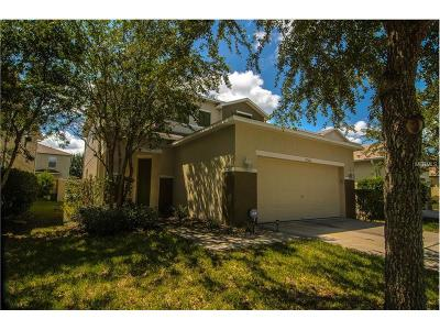 Land O Lakes Single Family Home For Sale: 17526 Balmaha Drive