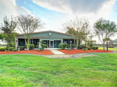 Dade City Single Family Home For Sale: 10651 Old Lakeland Highway